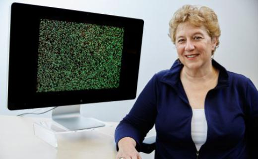 Gene-based breast cancer diagnostic test in the spotlight